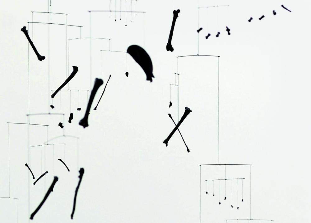 Große Arsch schwarze Muschi-Bilder