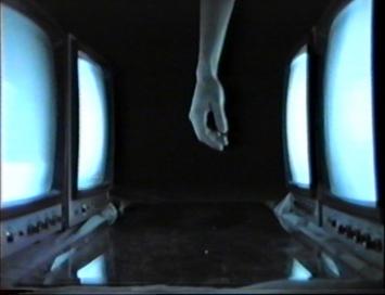Nives Widauer (*1965)monitorlove, 1989/2007symbioscreen, video projection (4:3)onto printed video still, video: colour, silent, 4:50 min,dimensions variablecourtesy the artist