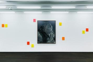 Ausstellungsansicht mit Gesichter des Alltags (Vögel), 2018, Sw-Fotografien, und Gesichter des Alltags (Menschen), 2018, Tusche und Tempera auf Papier,Foto:Camillo Paravicini