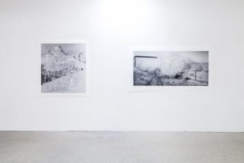 Ausstellungsansicht: Wim Bosch