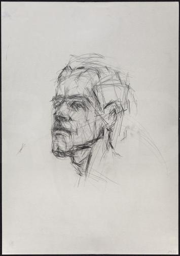 Die Zeichner Head male model 6 /Graphite on Paper / 43 x 61cm