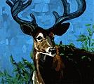 Stag, 2003, Öl auf Leinwand, 117 x 129 cm