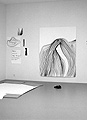 Silvia Bächli · Lily, 2004, Gouache, 200 x 150 cm, Privatsammlung Genève