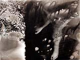 Sigmar Polke · Paris, 1971, ein Foto von 38 aus einer 41-teiligen Serie, je 18 x 24 cm, Privatsammlung, © Sigmar Polke