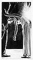 Robert Longo · Magellan #32 (Exhausted), 1996, Kohle, Graphit, Tinte und Kreide auf Papier, Privatsammlung Schweiz