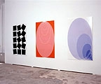 Dominik Stauch · Fibonaccis Racing Team, 2004/05, Inkjet Prints, Diasec, je 163 x 100 cm, Aufnahme aus der Galerie Bernhard Bischoff & Partner