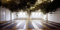 John Armleder · 12345678910111213141516171819-2021222324252627282930313233343536, Installationsansicht Y8, Internationales Sivanda Yoga Center