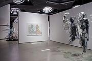 Maria Lassnig, Liz Larner · Zwei oder Drei oder Etwas, 2006, Ausstellungsansicht, © Kunsthaus Graz, Nicolas Lackner, 2006