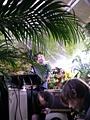 Peter Coffin · «Music for Plants», Installation, Rock im Gewächshaus mit der französischen Band Minitel, Palais de Tokyo, Paris, Foto: texte&tendenzen