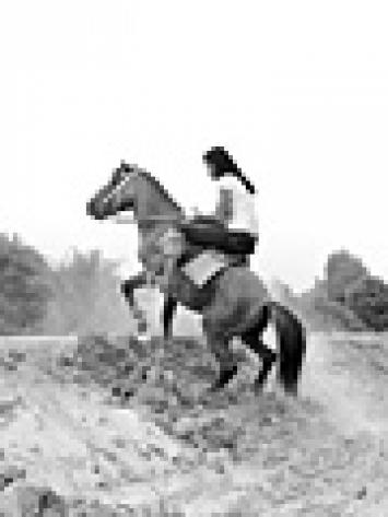 Robert Estermann · Distant Riders, 2007, Installation, © ProLitteris, Zürich