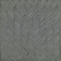 Bridget Riley · Descending, 1965, Privatsammlung, Courtesy Karsten Schubert, London