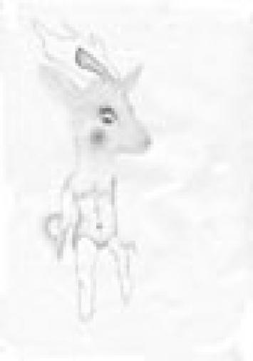 Pinned Crayon sur papier, 29,7 x 21,3 cm, 2006
