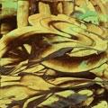 Acryl, Dispersion, Klarlack auf Holz 55x55 cm, 2006