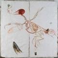 Mithu Sen · Untitled 41, 2009, Mixed Media, Collage, Zeichnung auf Papier, Diptychon, 208,2 x 208,2 cm, Courtesy Suzie Q Projects, Zürich