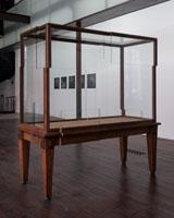 Leon Vranken . Oak rumble, 2007, bois, MDF, verre et bistre. Foto: Klaus Stoeber
