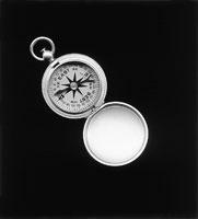Luis Camnitzer · Compass, 2003, Inkjet print, 100 x 90,5 cm. Foto: Peter Schälchli