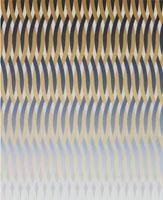 Giacomo Santiago Rogado · Aesculap, 2010, Acryl auf Leinwand, 100 x 80 cm