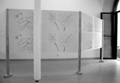 Robert Estermann · Ausstellungsansicht. © ProLitteris