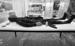 Jae Rhim Lee · The Infinity Burial Project, 2008 - wird fortgeschrieben, Installation (Mit Pilzsporen imprägnierter Anzug zur Kompostierung eines toten Körpers. Foto: Marcus Lieberenz/Bildbühne