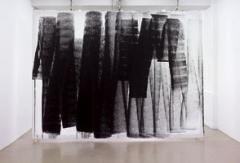 Renée Levi · Liestal 2, 2010, 330 x 450 cm. Foto: André Morin