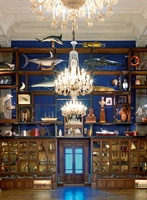 Veduta del gabinetto delle curiosità al Museo Oceanografico di Monaco, 2011. Courtesy NMNM, Museo Oceanografico e Mauro Magliani & Barbara Piovan