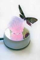 huber.huber · Human-Made (Butterfly Crystal), 2011, Dreifachhybrid-Schmetterling (Japan) auf gezüchtetem Alaun-Kristall, Crystal Rotary Slide Show, Glashaube
