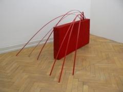 Renata Bünter · Auch hier wächst Glücksklee, 2012