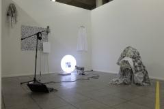 Dancing with'without Darwin Installation (Mikrofon, Ornamentgenerator, Tarnkleider), 2012