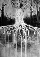 Christine Boillat · Racines, 2012, Kohle Bleistift und Acryl auf Papier, 210x150 cm