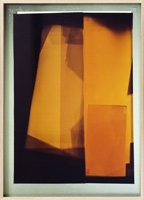 Thu Van Tran · Résidus, Ilfochrome-Drucke, Reproduktion von Fotogrammen, 2013, 52x72cm. Foto: M. Serra