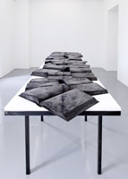 Estefanía Peñafiel Loaiza · Sismographies, 2.entrenerfs, 2013, 353x75,5x86,5 cm. Foto: M. Serra