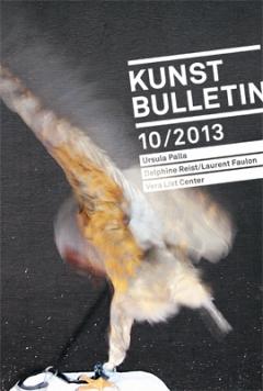 TITELBILD · Ursula Palla · the bird, 2013, Videoinstallation, Videostill, Aufnahmen im Greifvogelpark Buchs/SG, Videoloop 5', o.T.