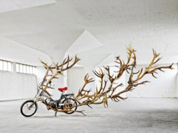 Sonja Feldmeier · Moonrucker, 2010/13, frisiertes Moped, Hirschgeweih, Strass, Kabelbinder, ca. 2,60x2,0x5,5m
