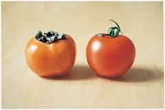 Kaki and Tomato, 2008, C-Druck auf Aluminium, 18,8x28,4cm, gerahmt, Courtesy Air de Paris, Paris