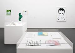 Ausstellungsansicht Caravan 2/2014. Aargauer Kunsthaus, Aarau. Foto: David Aebi
