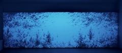Eric Winarto · Blacklight Selva, 2014, Centre d'art contemporain Yverdon-les-Bains