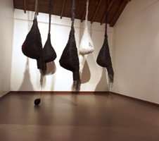 Smriti Dixit · Nest, 2014, Polythene Polypropylene, Grösse variabel