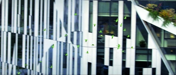 KOE, 2015, Filmstill von HD-Video, 4'17'', in Farbe, Courtesy Sprüth Magers & Gladstone Gallery