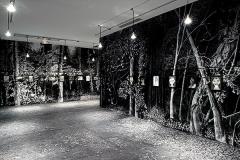 Jérôme Zonder · Fatum, 2015, Ausstellungsansichten Maison Rouge. Fotos: Marc Domage