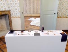 Georges Steinmann · The Soul of Remedies, 2015, Installation ©ProLitteris