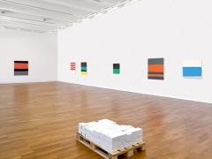 Sereina Steinemann · Blick in die Ausstellung. Foto: Jürg Fausch