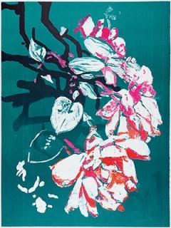 Vera Rothamel · Passiflora, 2015, 30 Lithografie-Unikate, je 80x60cm © ProLitteris