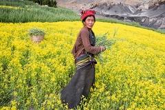 Manuel Bauer/Agentur Focus · Sam Dzong- Ein Dorf zieht um, Bilder aus der Ausstellung