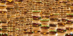 Guthrie Lonergan · Burgers (My Burger Came Back From the War), 2012, Web Application