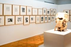 Henry Moore · Elephant Skull, 1970, Ausstellungsansicht, CAG, MAH, 2016. Foto: C. Rümelin