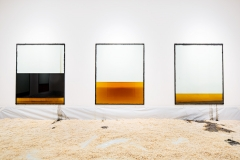 Neutral Density, 2016, Glas, Silikon, gebrauchtes mineralisches und organisches Öl, 9 Bilder 1,6x2m, Ausstellungsansicht Musée cantonal des Beaux-Arts, Lausanne