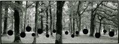Aliki Braine · The Hunt 3 (Panorama), 2009, 100x255cm, Courtesy Bendana Pinel Art Contemporain