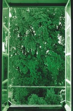 Tree Filling Window, 2002, alle Werkaufnahmen Courtesy Galerie Buchholz Berlin/Köln