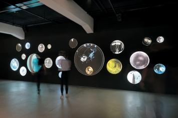 Wolkenkerne, 2017, Ausstellungsansicht Mondgänse und Wanderbäume im HeK Basel (unten) © ProLitteris. Foto unten: Franz Wamhof