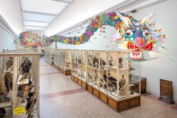 Ai Weiwei · With Wind, 2014, Bambus und Seide, ca. 240x240x5000cm, Ausstellungsansicht, Musée cantonal des Beaux-Arts / Musée cantonal de Zoologie, Lausanne, 2017. Foto: Etienne Malapert